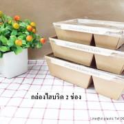 กล่องไฮบริด2ช่อง(111)